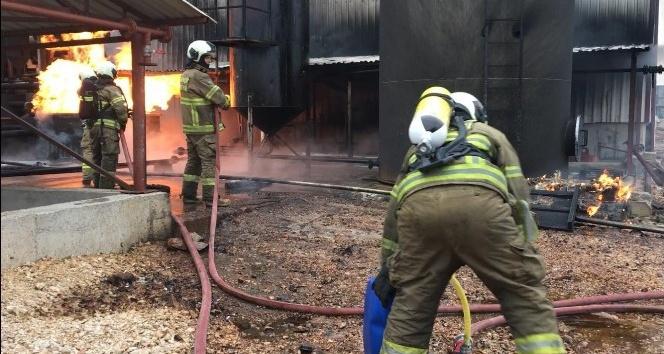 Bandırma'da Bitkisel yağ fabrikasında yangın