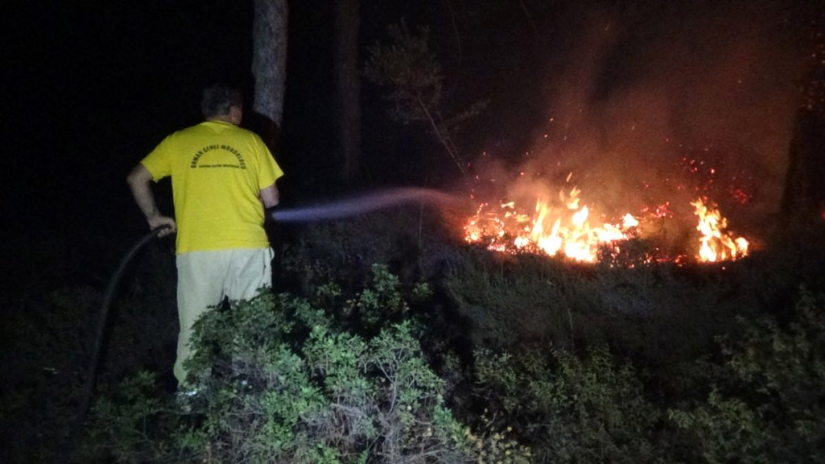 Ayvalık taki orman yangını kontrol altına alındı